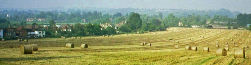 Save Hollands Farm